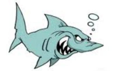 Costa Blanca Shark