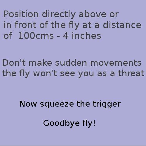 fly instructions.jpg